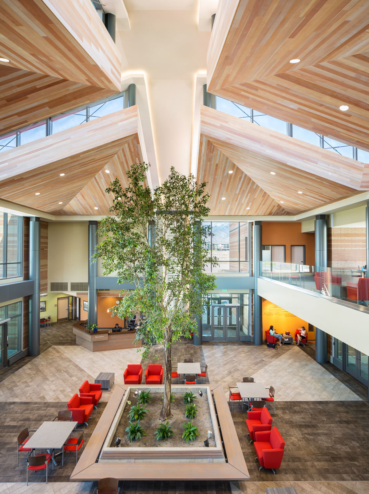 A planted tree stands in the middle of the atrium in the classroom and student services building.