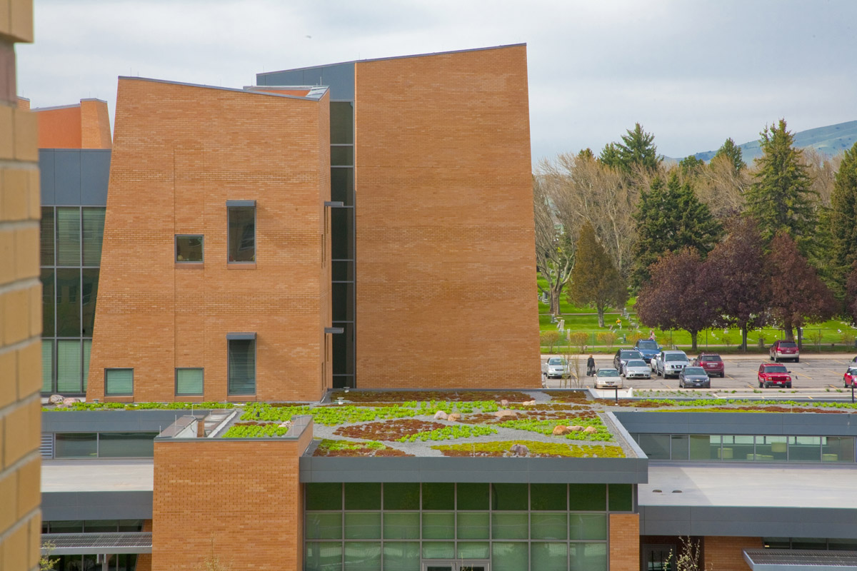 Early childhood education building view showing part of the green roof with green, red, and yellow plants growing.