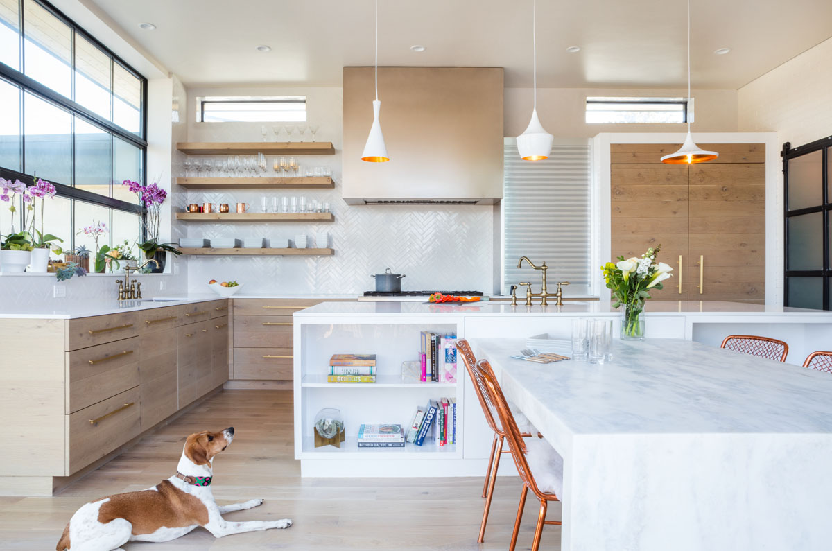 A dog lies on the floor next to an L-shaped island in the bright kitchen of this modern residential design.
