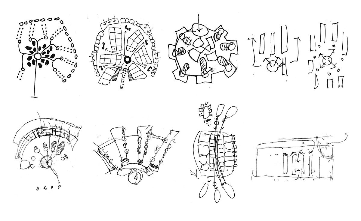A group of hand-drawn sketches exploring layout concepts for the healthcare building.