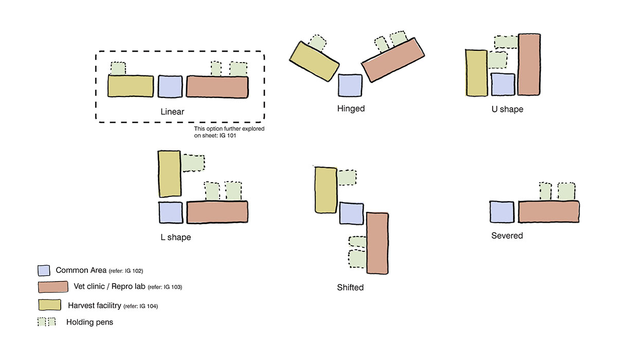 A diagram showing possible layouts for the modern barn design.